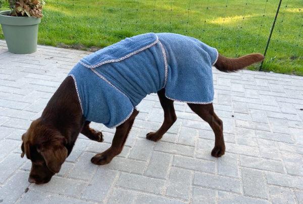 Hondenjasje gratis patroon