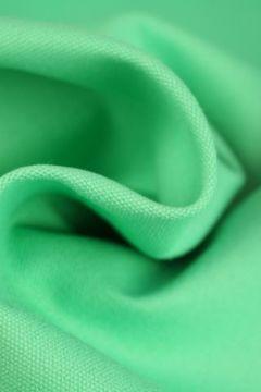 Canvas mint