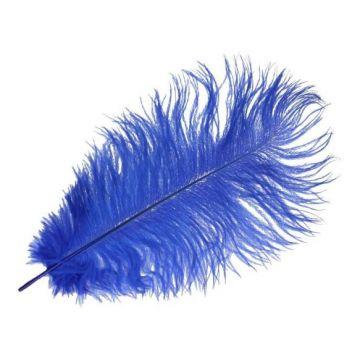 gekleurde veer blauw 22cm