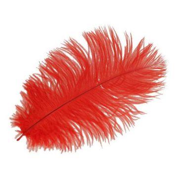gekleurde veer rood 22cm
