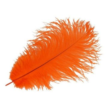 gekleurde veer oranje 30cm