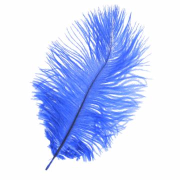 gekleurde veer blauw 17.5cm