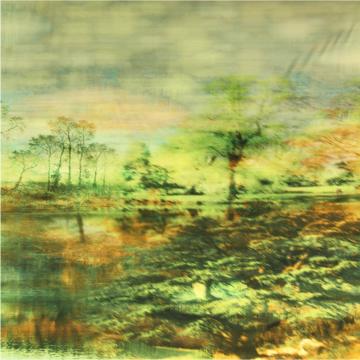 Katoenen Tricot Paneel - Mistic Forest