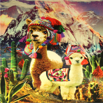 Katoenen Tricot Paneel - Fun with the Alpaca's!