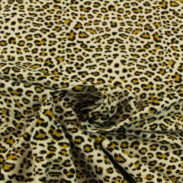 leopard on soft grey