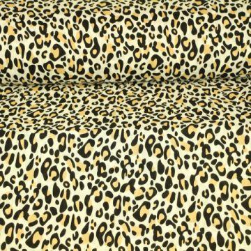Sandy Leopard
