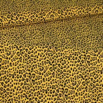 Leopard on Ocher