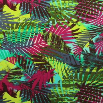 Lycra - Under the palm leaves