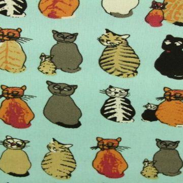 Canvas - Cats