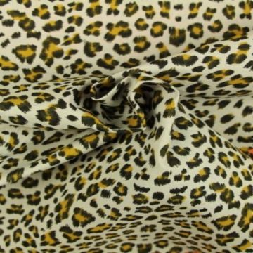Leopard on Soft Grey
