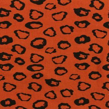 Leopard on Rusty