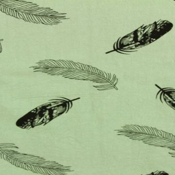 Feathers on Vintage Green